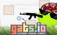 Gats io | Play Games IO